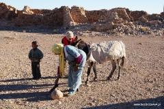 Maroko 2015/2016