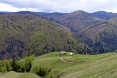 Rumunia 2016 cz.1