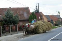 Rumunia 2016